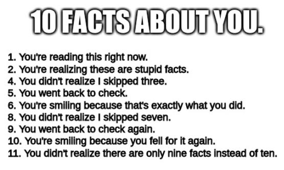10 faktaa.PNG
