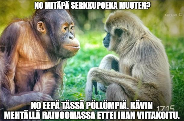 meme monkeys.PNG