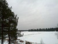 IMG_20131110_125049.