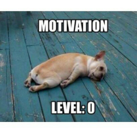motivaatio.