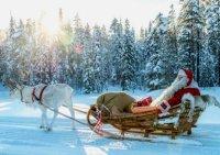pello-joulupukin-poromaa-lappi.