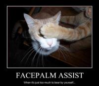 facepalm assist.PNG